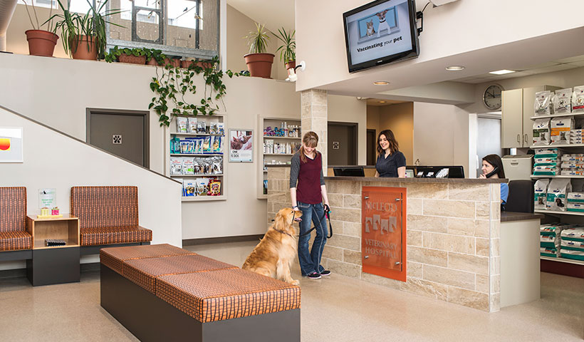 Meet our friendly staff at the Mcleod Vet Clinic