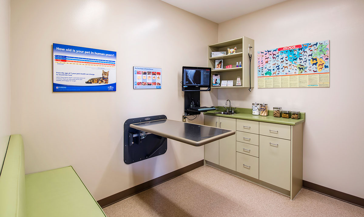McLeod Vet Clinic examination room