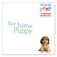 Download McLeod Vet Clinic's information on getting a new puppy