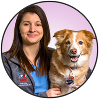 Ashley Celhar is one of the friendly helpful, receptionists at McLeod Vet Hospital.
