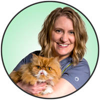 Meet Cindy Sontag, our friendly Hospital Manager at McLeod Vet Clinic